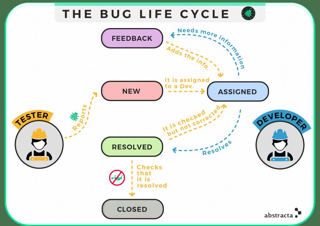 The bug life cycle