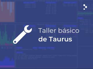 herramienta de testing taurus